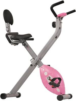 Sunny Health & Fitness Exercise Bike SF-RB1117
