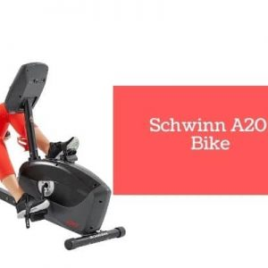 Schwinn A20 Recumbent Bike